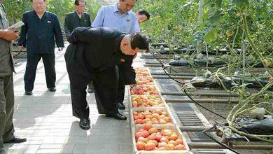 Photo of ل كۆریا باكور هەر كەسێ خوارنێ بهەدەر بدەت دێ هێتە سزادان